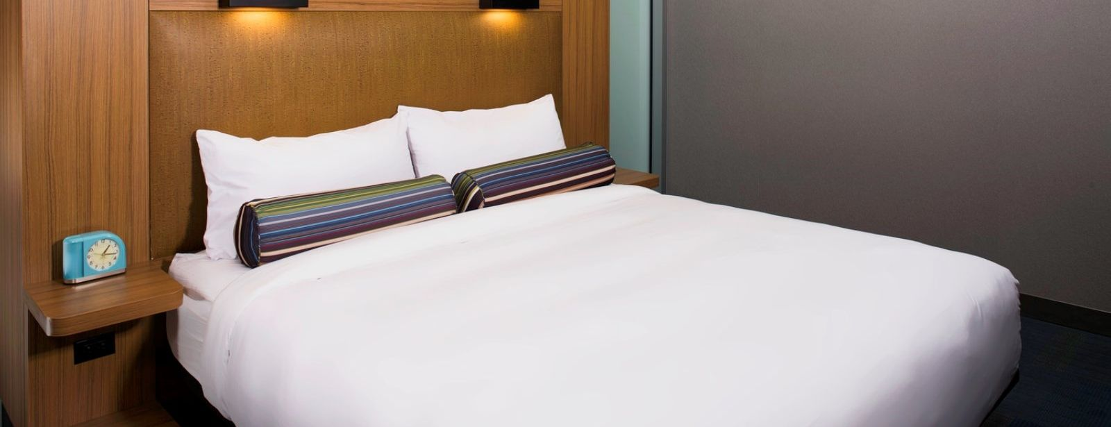 Cleveland Accommodations - Aloft King Room